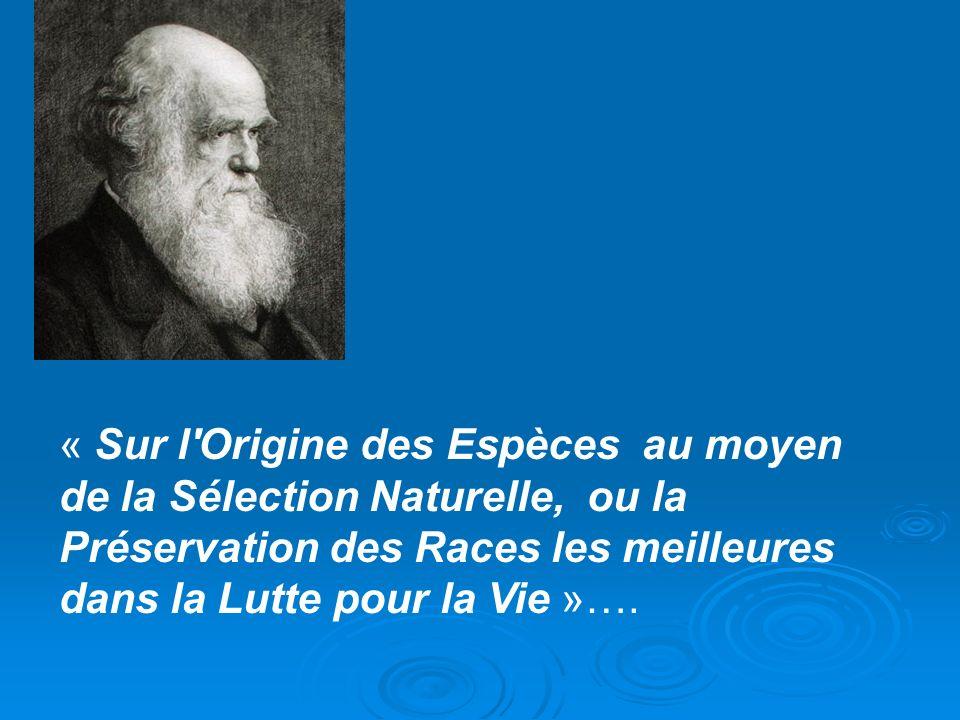 « Sur l Origine des Espèces au moyen de la Sélection Naturelle, ou la Préservation des Races les meilleures dans la Lutte pour la Vie »….