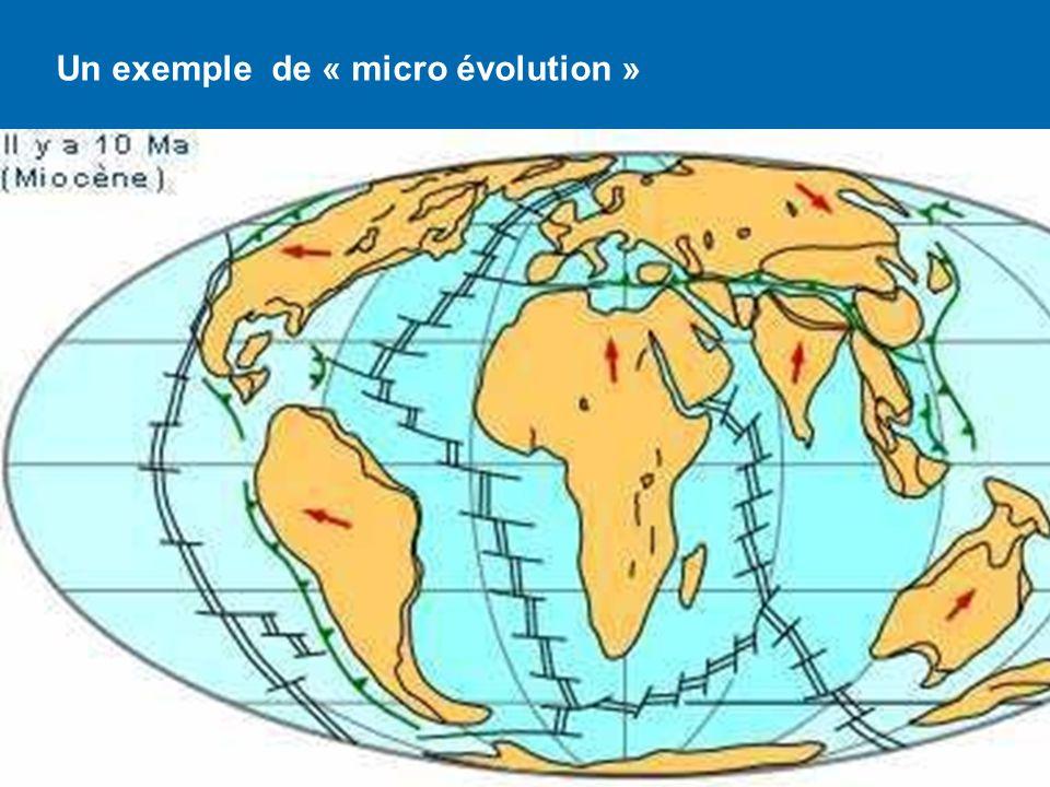 Un exemple de « micro évolution »