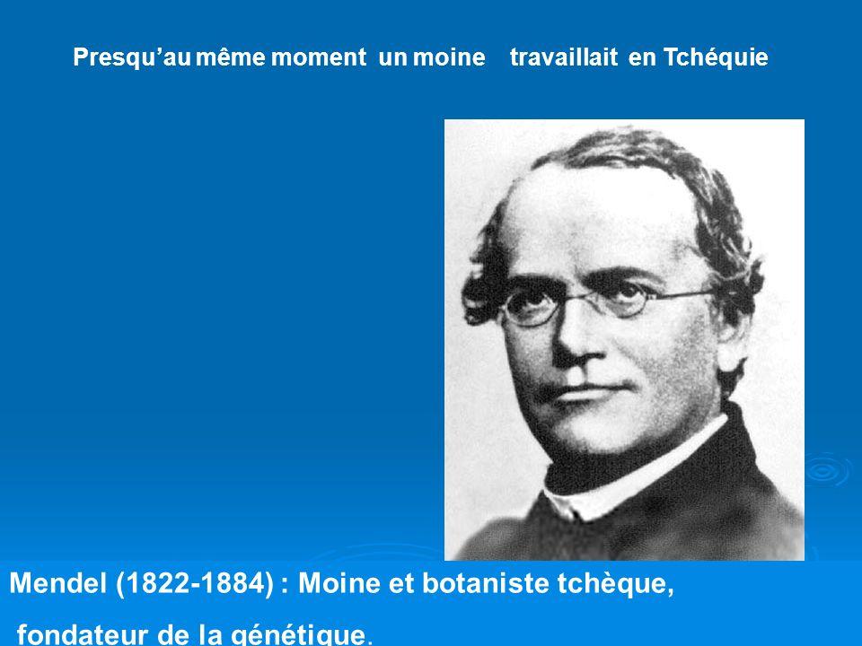 Mendel (1822-1884) : Moine et botaniste tchèque,