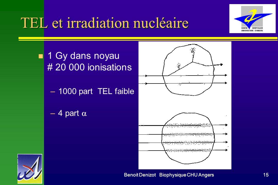 TEL et irradiation nucléaire