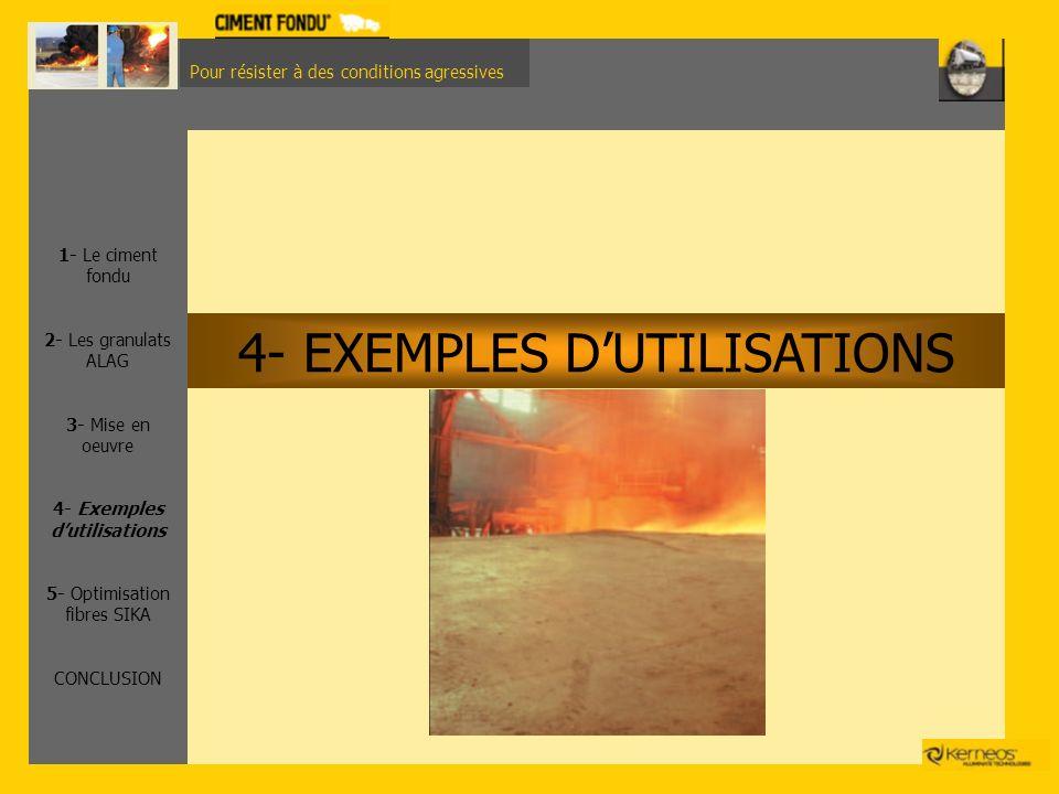 4- EXEMPLES D'UTILISATIONS
