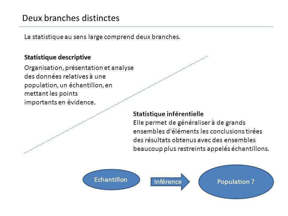 Deux branches distinctes