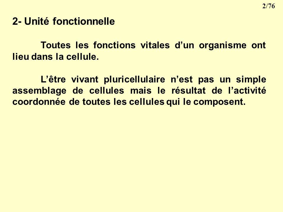 2- Unité fonctionnelle Toutes les fonctions vitales d'un organisme ont lieu dans la cellule.