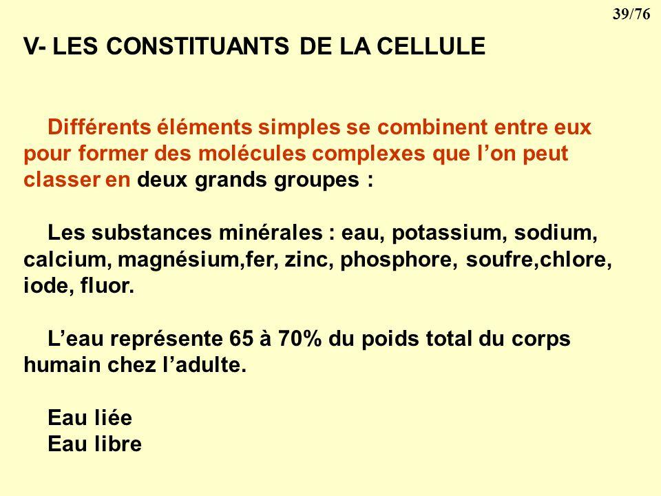 V- LES CONSTITUANTS DE LA CELLULE