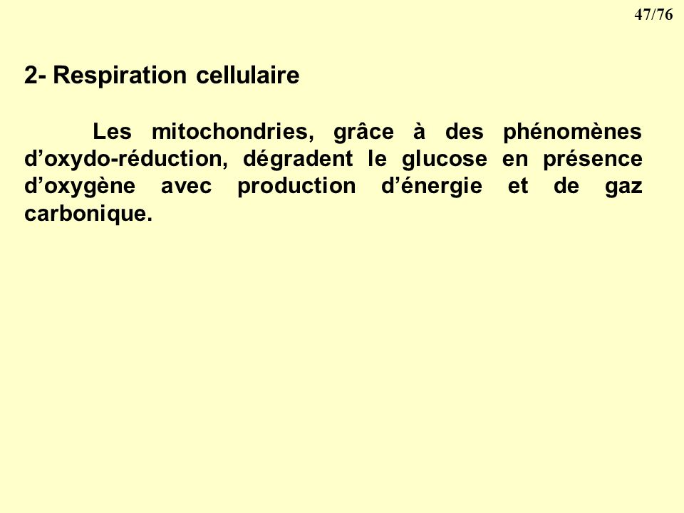 2- Respiration cellulaire