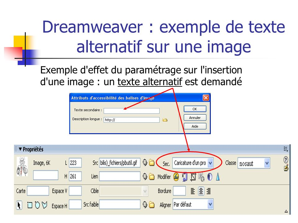 Dreamweaver : exemple de texte alternatif sur une image