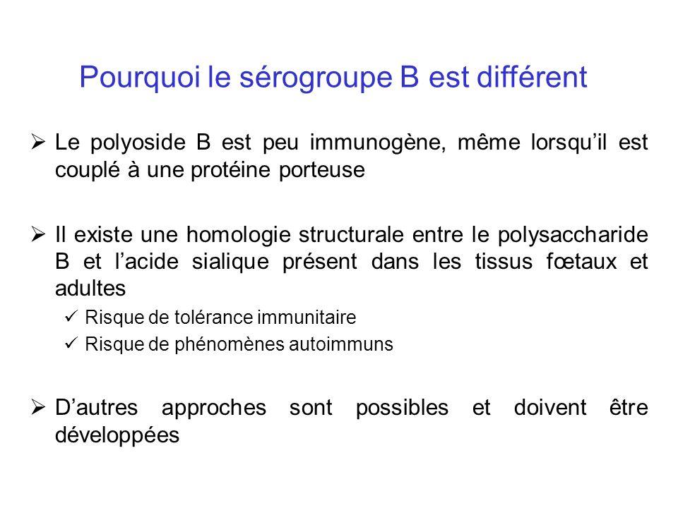 Pourquoi le sérogroupe B est différent