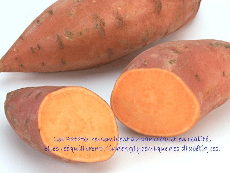 Les Patates ressemblent au pancréas et en réalité ,