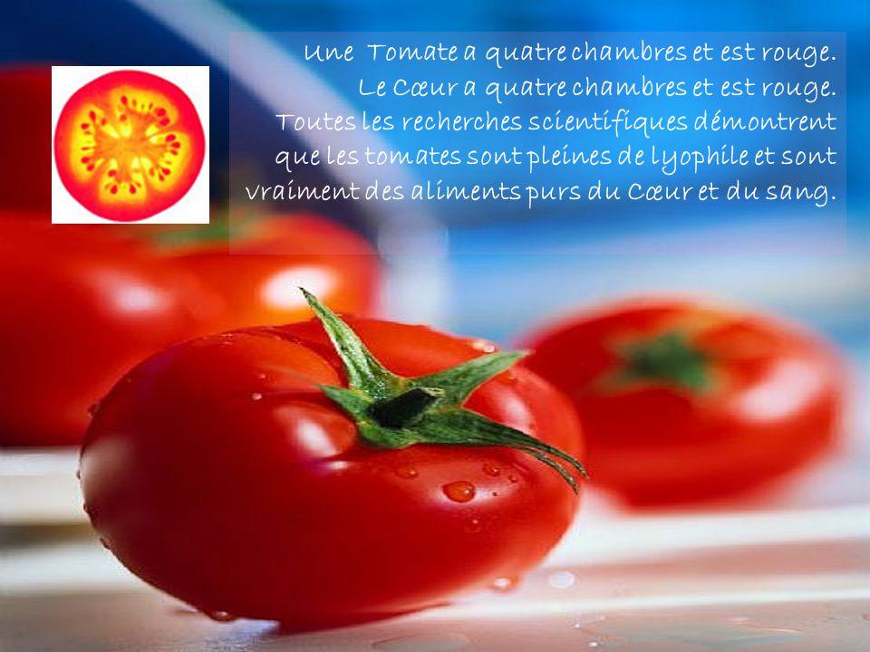Une Tomate a quatre chambres et est rouge.