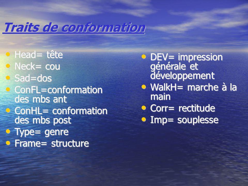 Traits de conformation