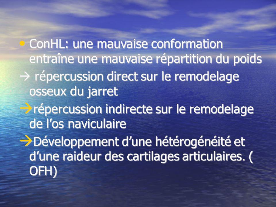 ConHL: une mauvaise conformation entraîne une mauvaise répartition du poids