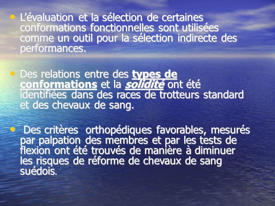 L'évaluation et la sélection de certaines conformations fonctionnelles sont utilisées comme un outil pour la sélection indirecte des performances.