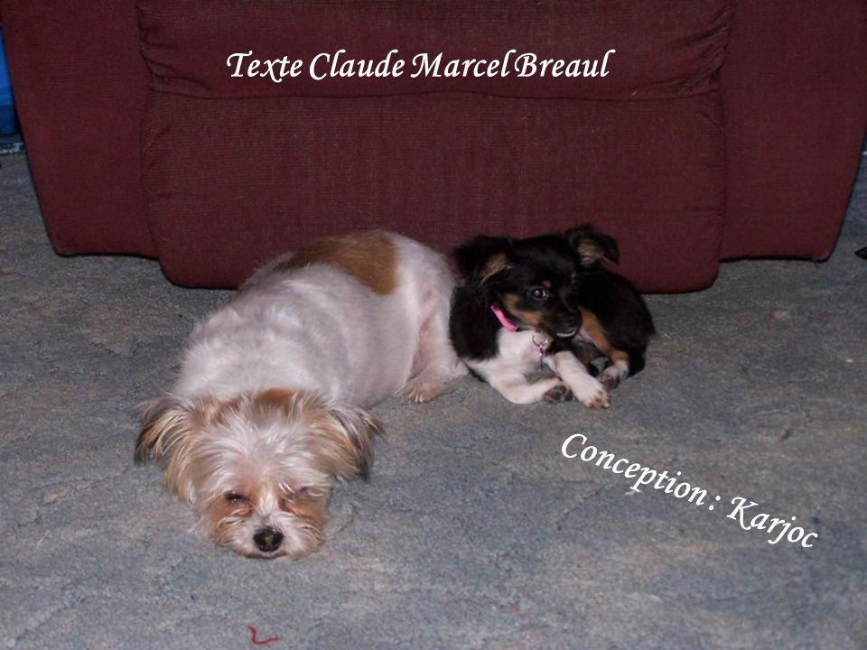 Texte Claude Marcel Breaul