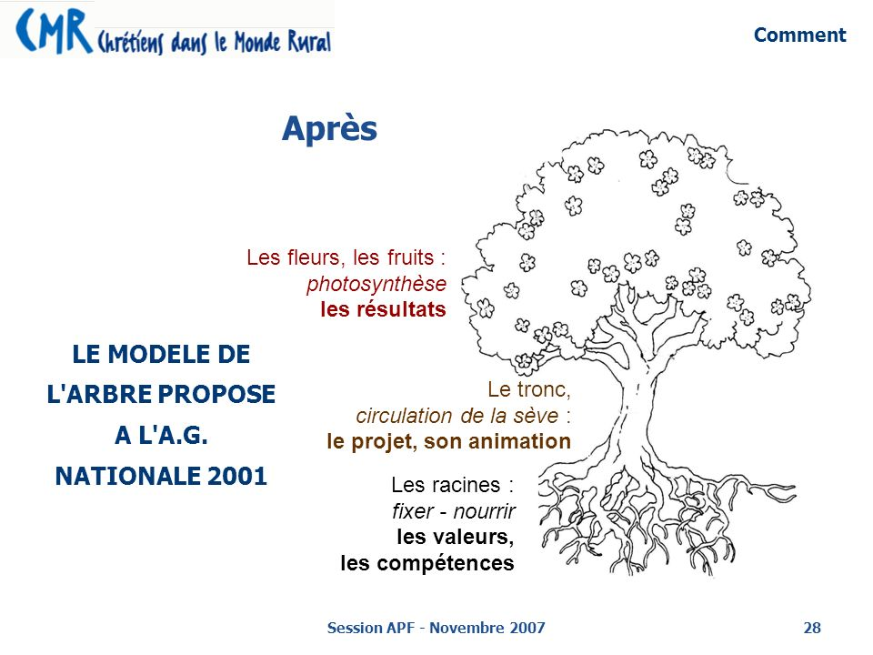 LE MODELE DE L ARBRE PROPOSE A L A.G. NATIONALE 2001