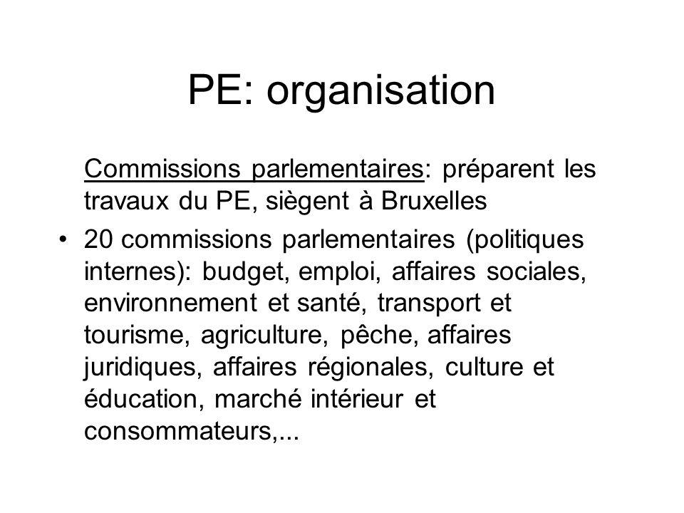 PE: organisation Commissions parlementaires: préparent les travaux du PE, siègent à Bruxelles.