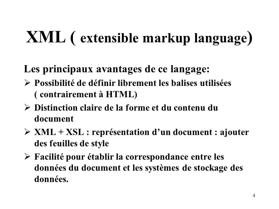 XML ( extensible markup language)