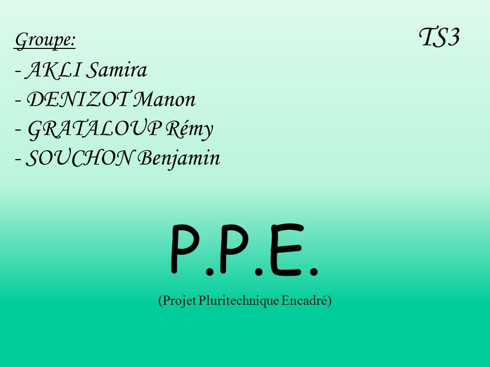 P.P.E. (Projet Pluritechnique Encadré)
