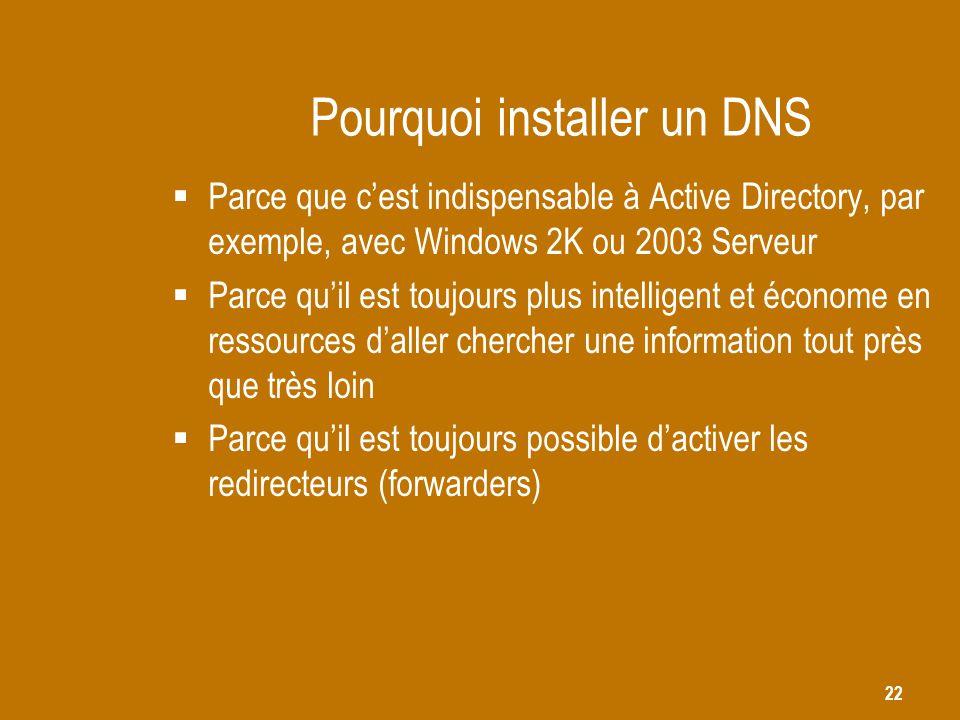 Pourquoi installer un DNS