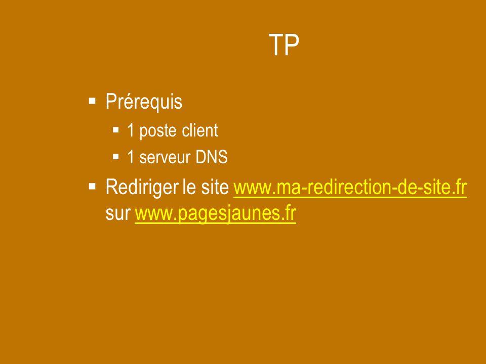 TP Prérequis. 1 poste client. 1 serveur DNS.