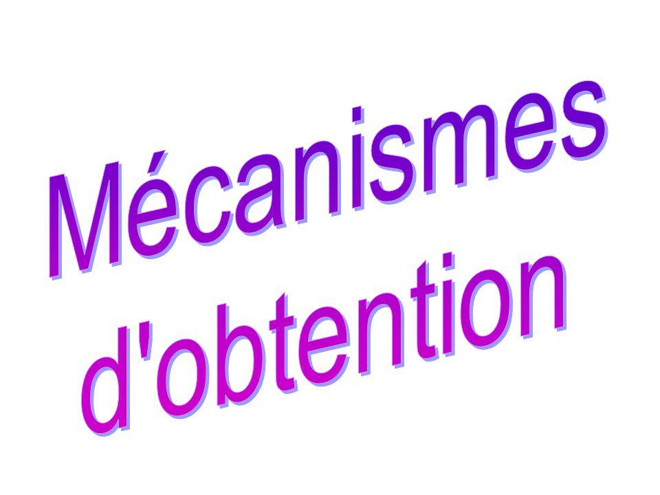 Mécanismes d obtention