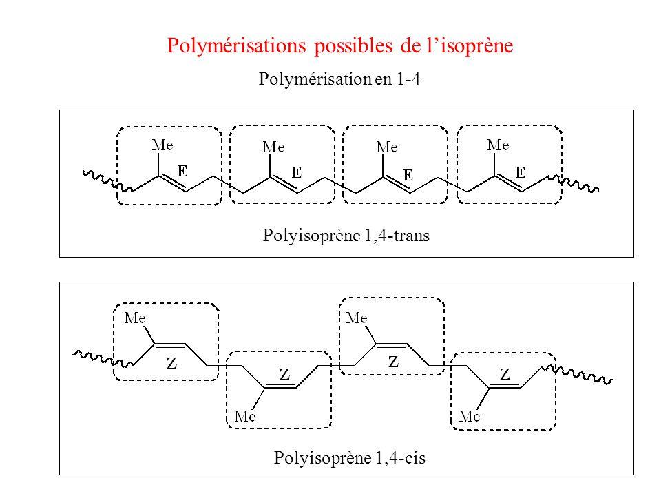 Polymérisations possibles de l'isoprène
