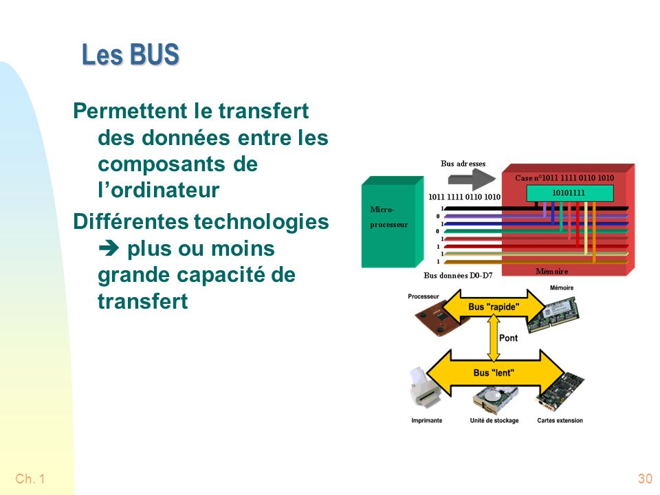 Les BUS Permettent le transfert des données entre les composants de l'ordinateur.