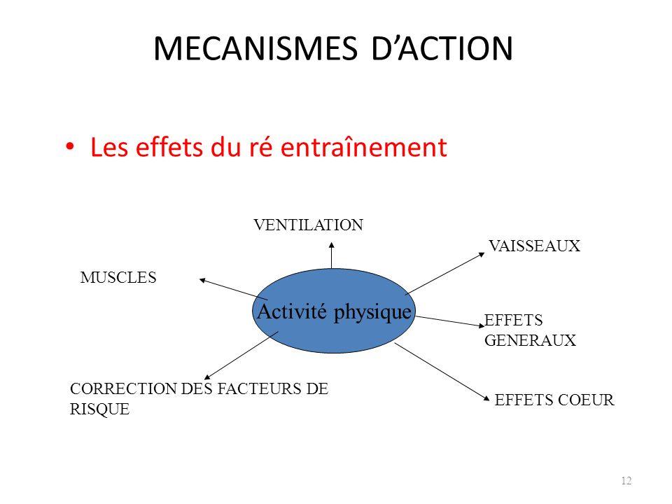 MECANISMES D'ACTION Les effets du ré entraînement Activité physique
