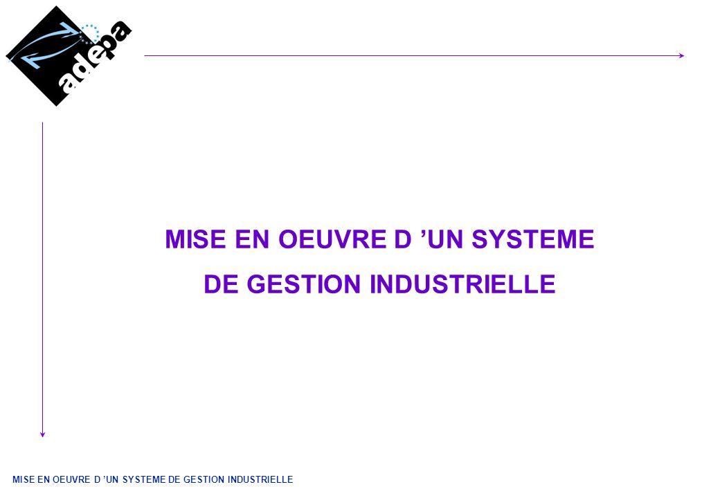 MISE EN OEUVRE D 'UN SYSTEME DE GESTION INDUSTRIELLE