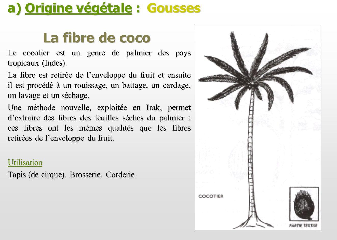 La fibre de coco a) Origine végétale : Gousses