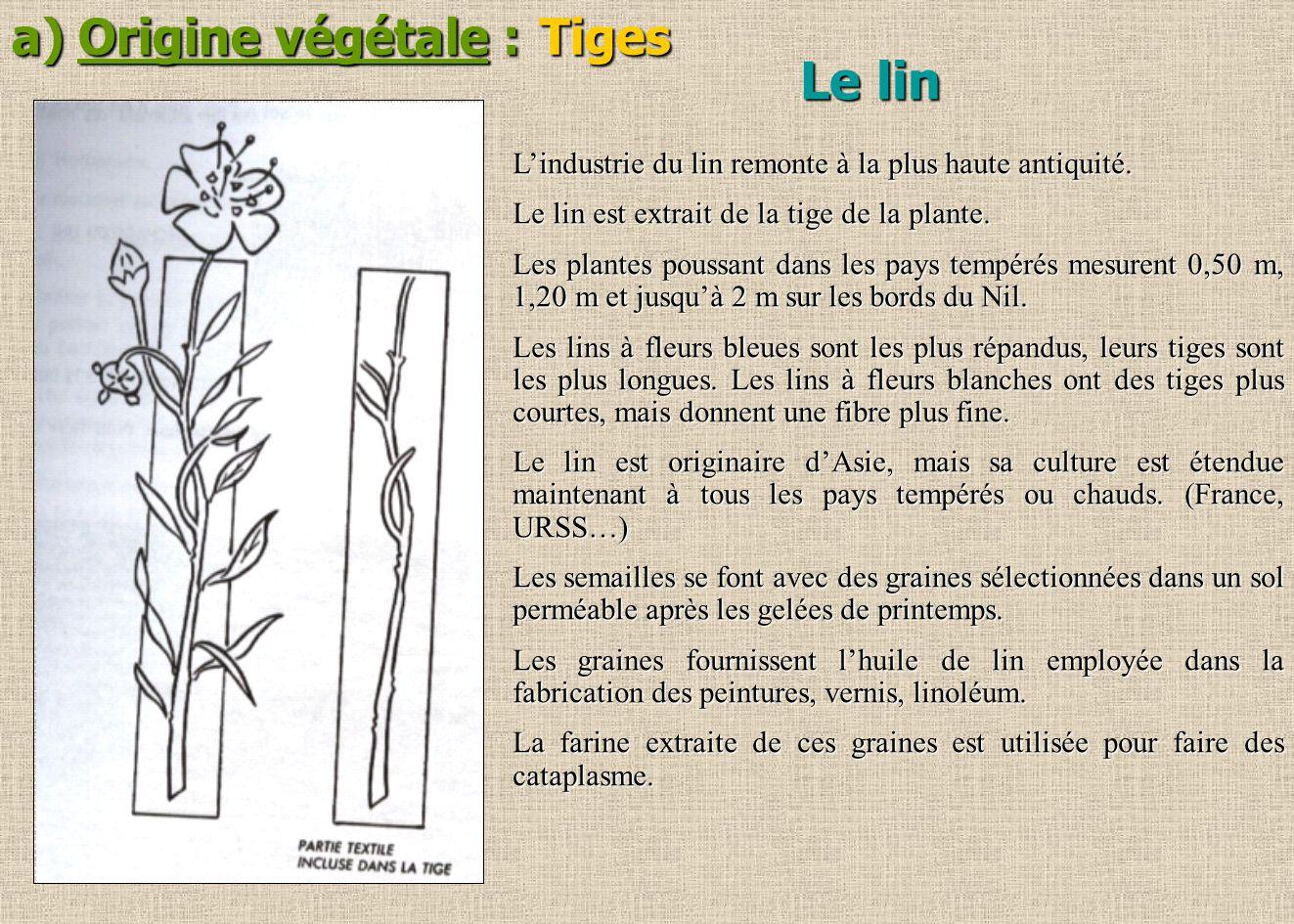 a) Origine végétale : Tiges