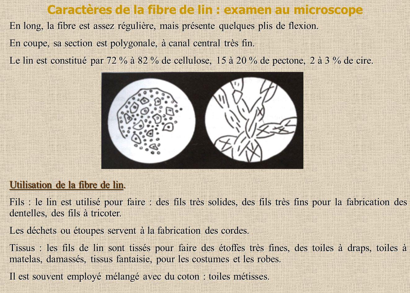 Caractères de la fibre de lin : examen au microscope