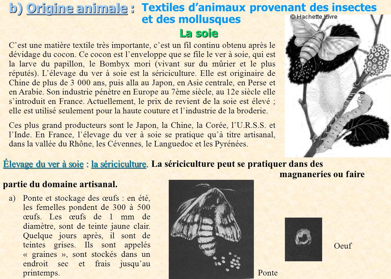 b) Origine animale : Textiles d'animaux provenant des insectes et des mollusques. La soie.