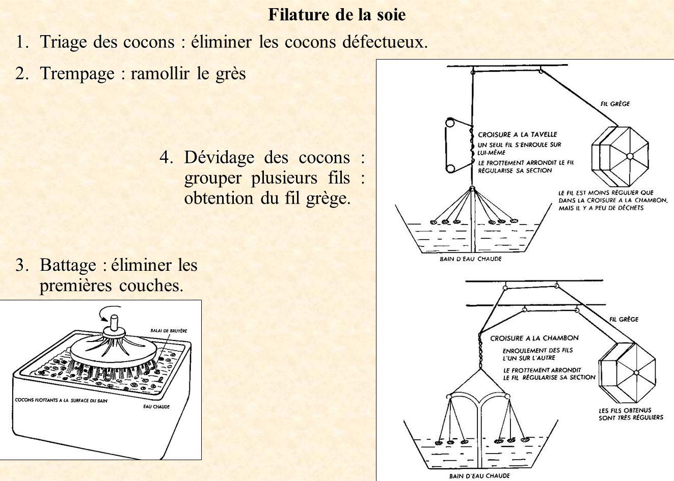 Triage des cocons : éliminer les cocons défectueux.