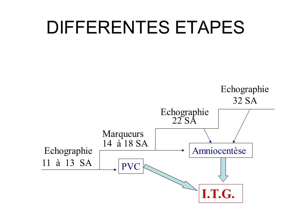 DIFFERENTES ETAPES I.T.G. Echographie 32 SA Echographie 22 SA