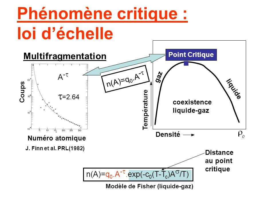 Phénomène critique : loi d'échelle