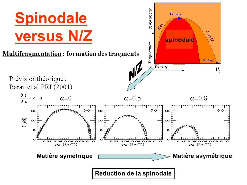 Spinodale versus N/Z Multifragmentation : formation des fragments N/Z