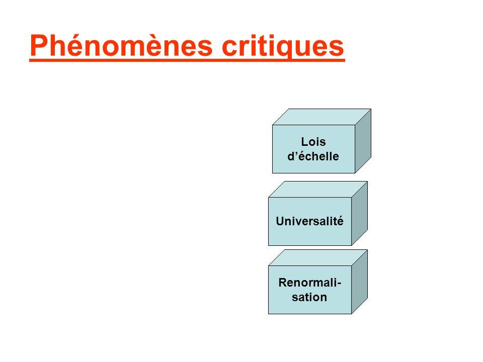 Phénomènes critiques Lois d'échelle Universalité Renormali- sation