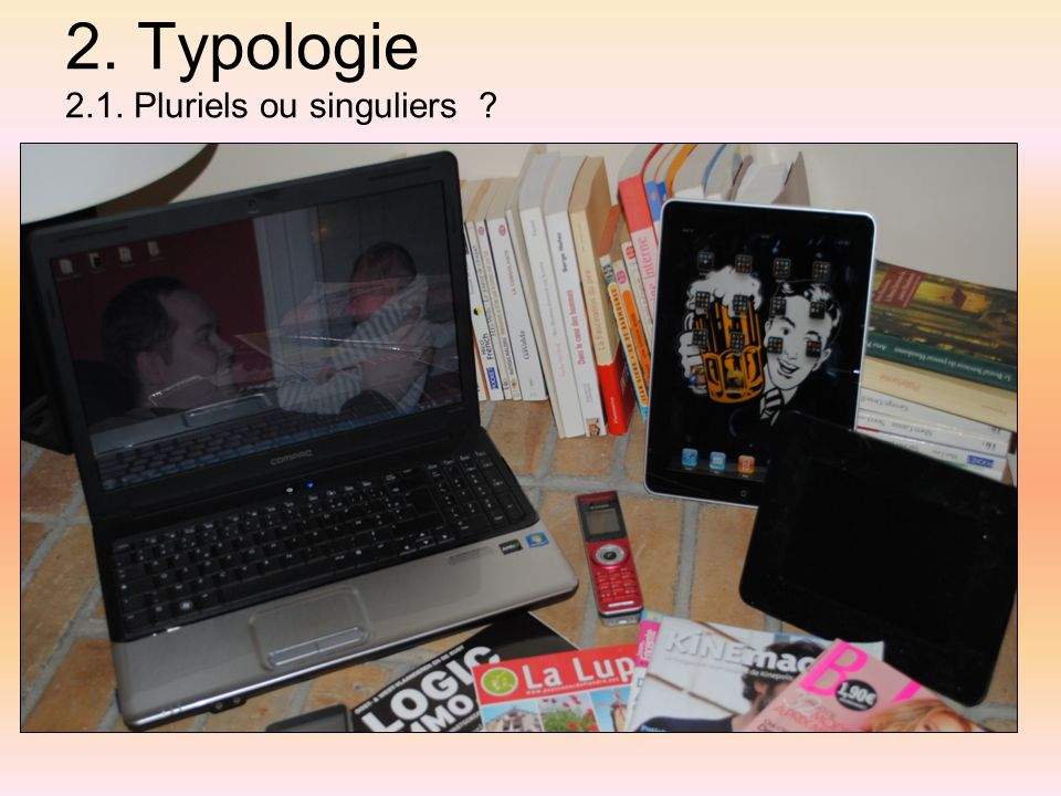 2. Typologie 2.1. Pluriels ou singuliers