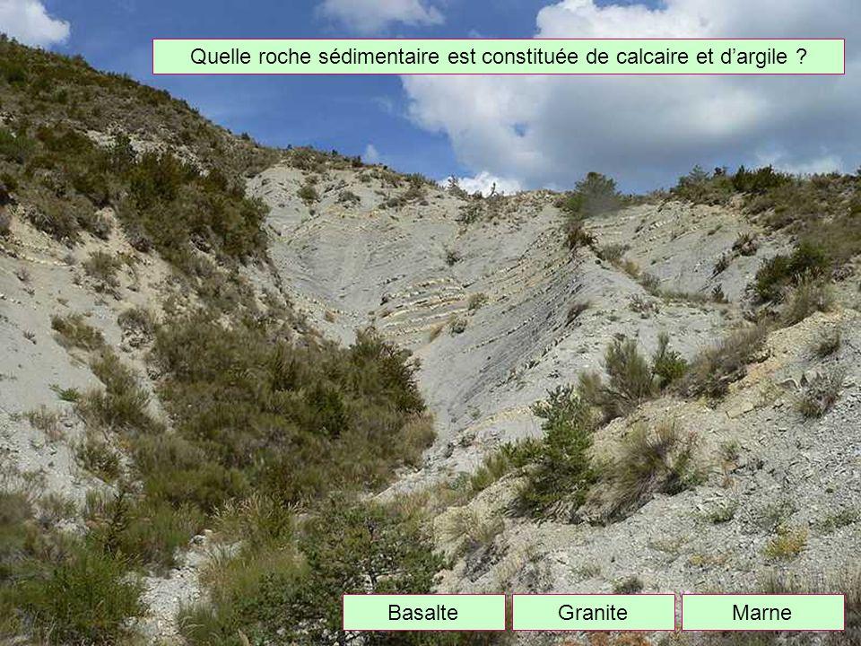 Quelle roche sédimentaire est constituée de calcaire et d'argile