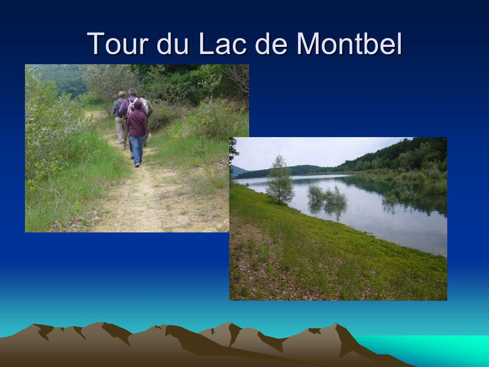 Tour du Lac de Montbel