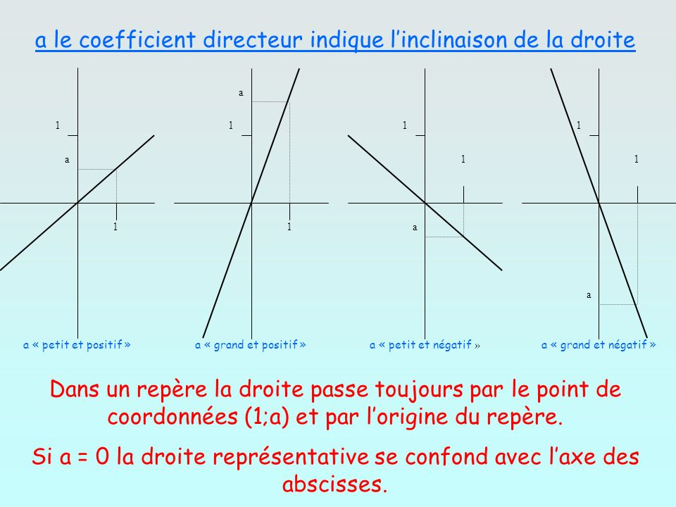 Si a = 0 la droite représentative se confond avec l'axe des abscisses.