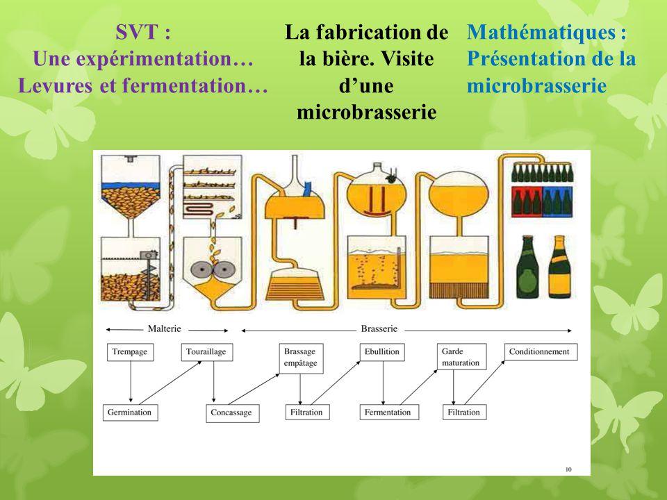 Levures et fermentation…