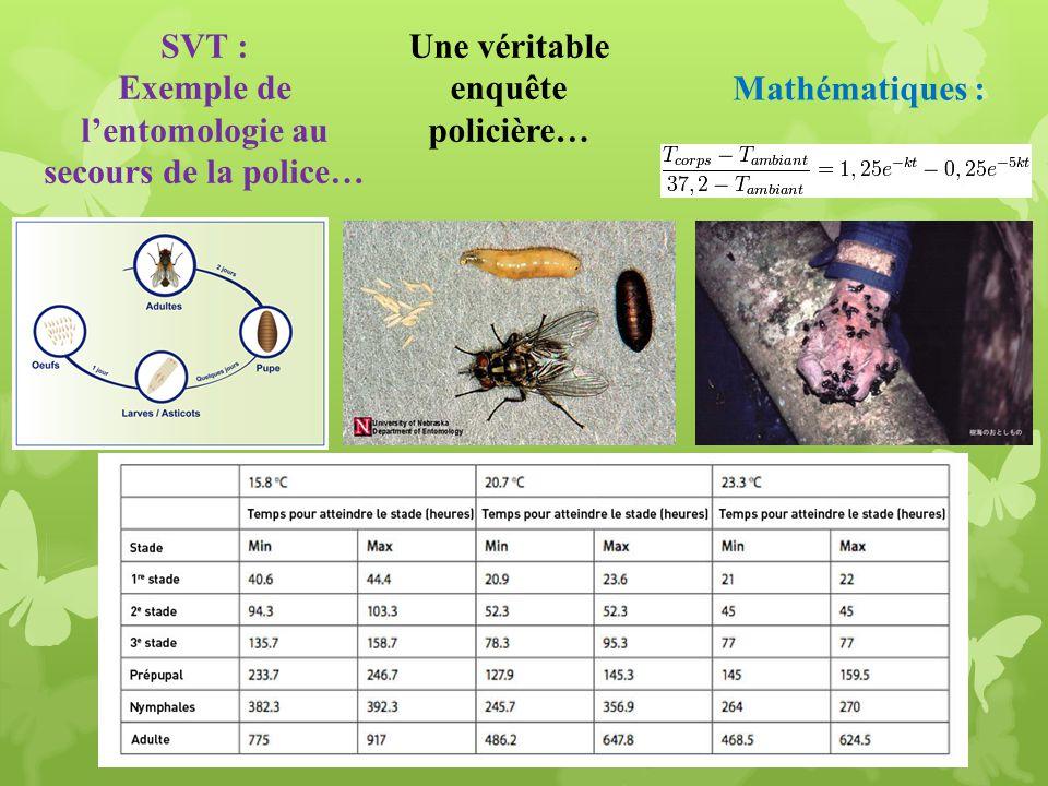 Exemple de l'entomologie au secours de la police…