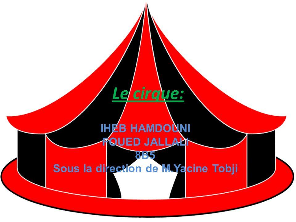 IHEB HAMDOUNI FOUED JALLALI 8B5 Sous la direction de M.Yacine Tobji