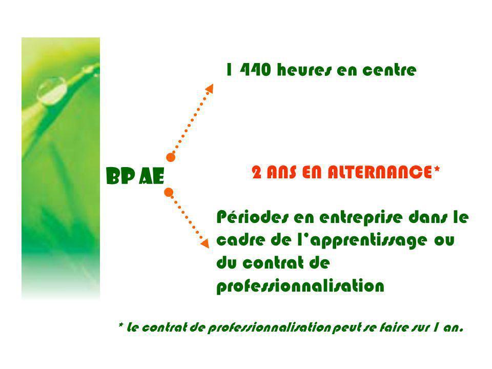BP AE 1 440 heures en centre 2 ANS EN ALTERNANCE*