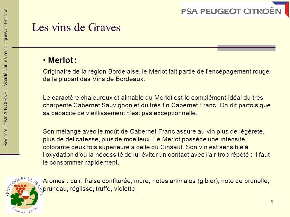 Les vins de Graves • Merlot :