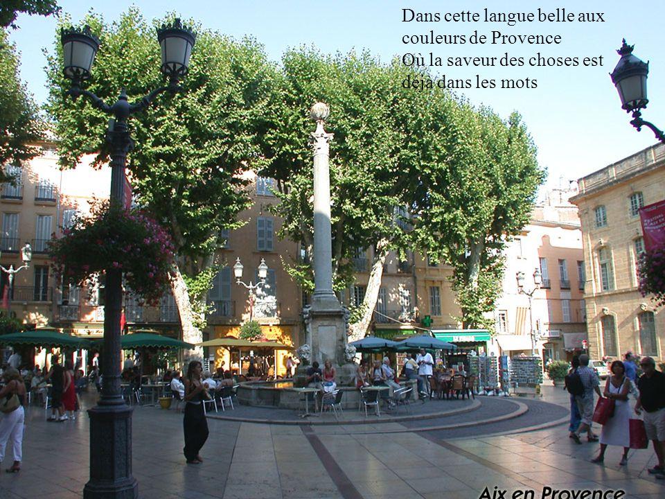 Dans cette langue belle aux couleurs de Provence