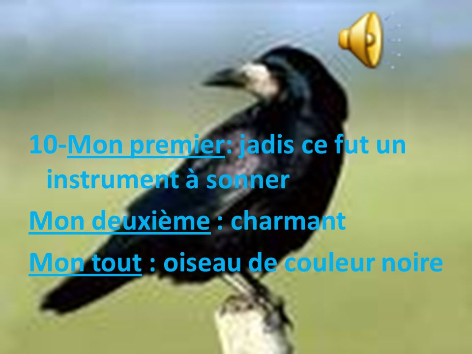 10-Mon premier: jadis ce fut un instrument à sonner Mon deuxième : charmant Mon tout : oiseau de couleur noire