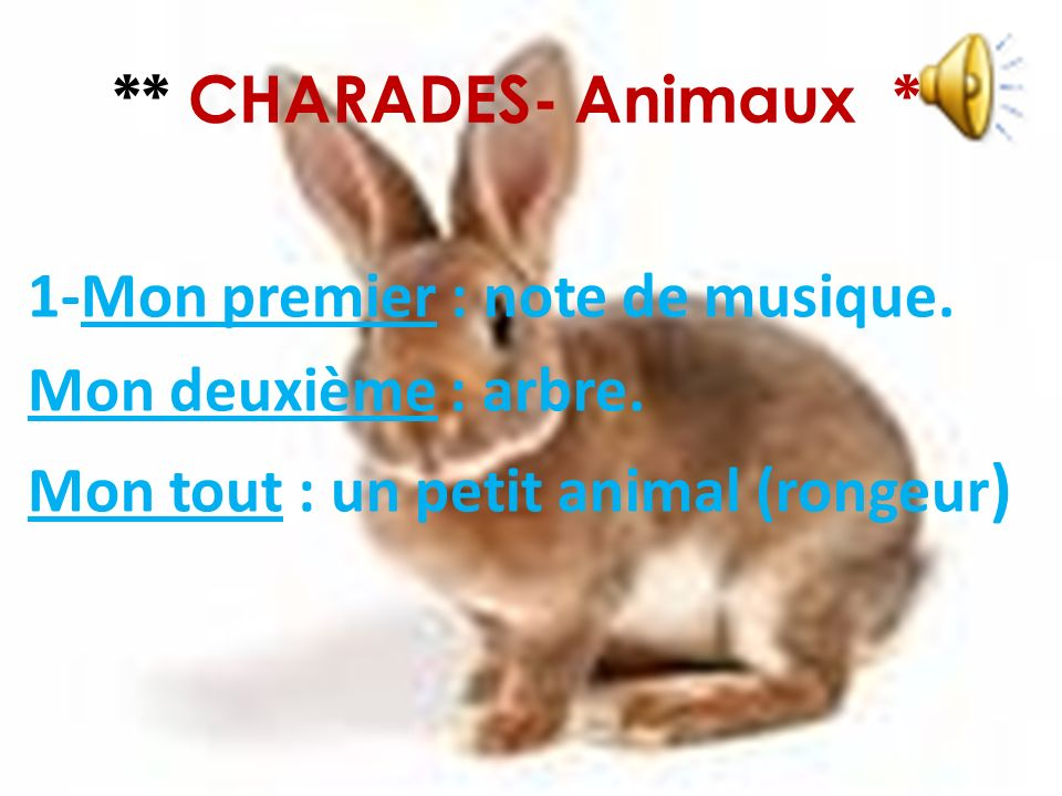 ** CHARADES- Animaux **