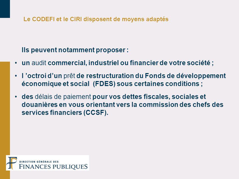 un audit commercial, industriel ou financier de votre société ;